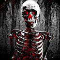 Skeleton Wallpapers icon