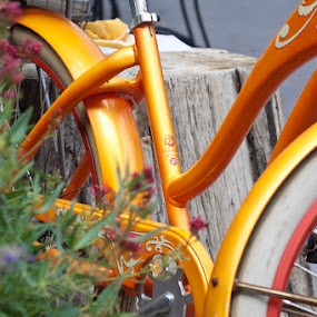 by Dana Styber - Artistic Objects Other Objects ( bicycle transportation travel colorful fun )
