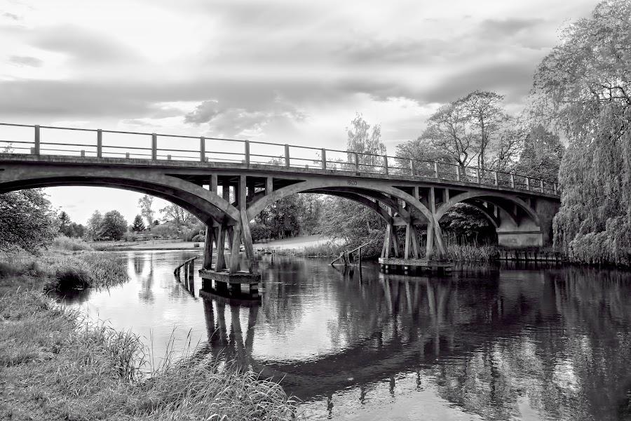 Amtmand Hoppe Bridge by Poul Erik Vistoft Nielsen - Black & White Buildings & Architecture ( water, black and white, trees, denmark, bridge )