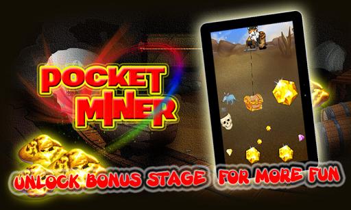 Pocket Miner