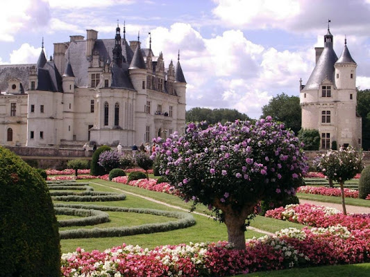 Castello di Chenonceau di scratus