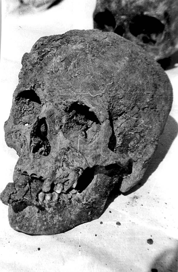 Раскопки в Демьяновом Лазе. Кляп во рту черепа жертвы
