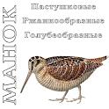 Манок на птиц PRO icon