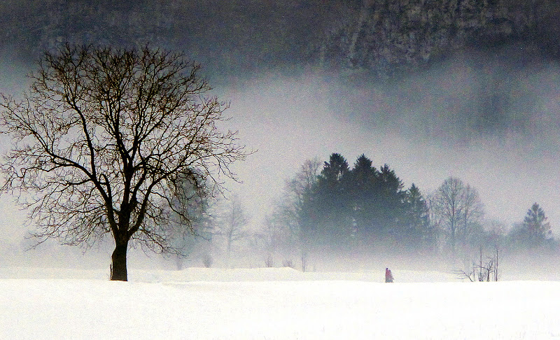 passeggiata sulla neve di cosetta