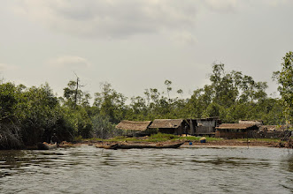 Photo: village life in mangroves