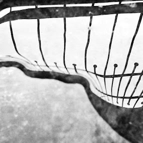 When Barriers Flow by Sarvesh Blanc - Novices Only Abstract ( water, freedom, black and white, philosophy )