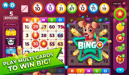 Bingo My Home  screenshots 15