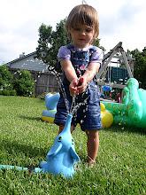 Photo: Elephant Sprinkler