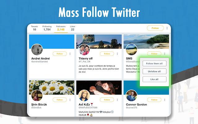 Twitter auto follower