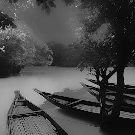 by Mamunur Rashid - Black & White Landscapes ( tree, water, boat, fog )