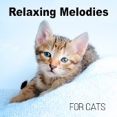 Relaxing Melodies for Cats - Relaxing Melodies to Calm Down Your Pet, Soothing Relaxation Music