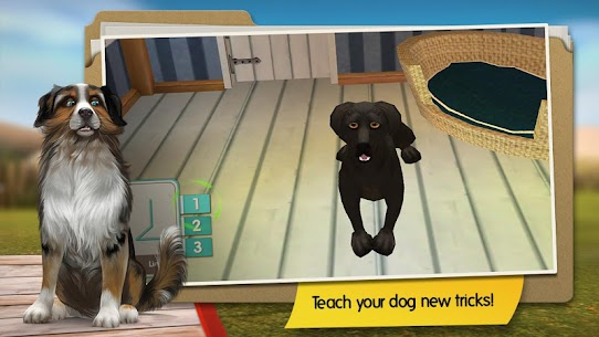 DogHotel – Play with dogs MOD Apk (Unlocked/Unlimited Coins) 5
