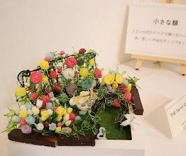 Photo: <The Secret Garden> RYO https://ameblo.jp/papillon-riro/