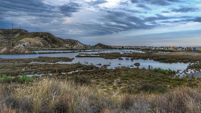 El Salar de los Canos es el humedal más importante de todo el norte de la provincia.