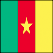 TV Cameroon Info Channel