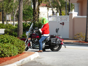 Photo: The Grinch Who Stole Christmas - Winter Haven City Park, Christmas morning
