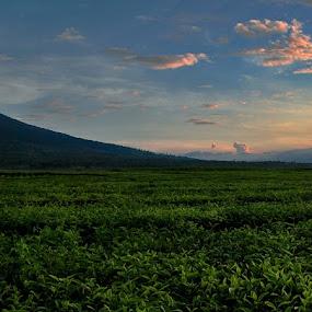 kerinci by Syahbuddin Nurdiyana - Landscapes Mountains & Hills