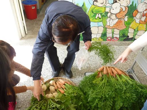 幼兒園-一起拔蘿蔔