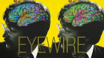 Photo: EyeWire.org