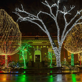 Lights on the Square by Jay Stout - Public Holidays Christmas (  )