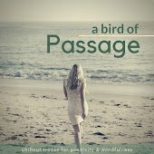 A Bird Of Passage (Chillout Tracks For Positivity & Mindfulness)