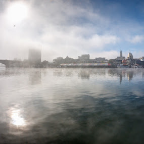 Winter's Coming by Charles Brooks - City,  Street & Park  Skylines ( bird, contrast, seagull, valdivia, hdr, autumn, fog, bridge )