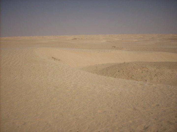 Vento e Dune nel Sahara di cronker