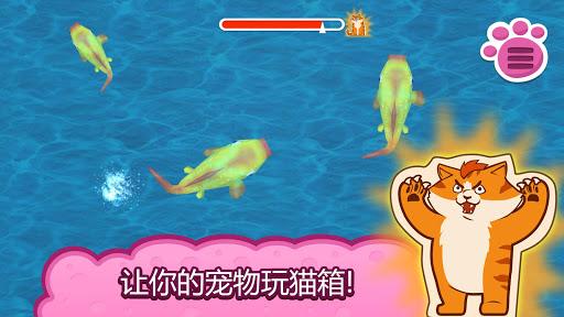 猫拳击3D:为宠物的游戏