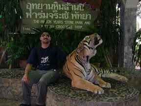safari world thailand tiger