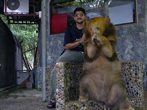 safari world thailand bear