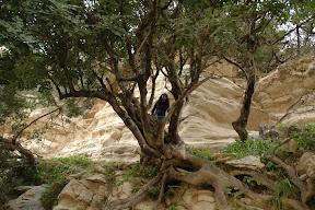 Avakas gorge Paphos Cyprus