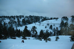Mount Olympus snow troodos cyprus