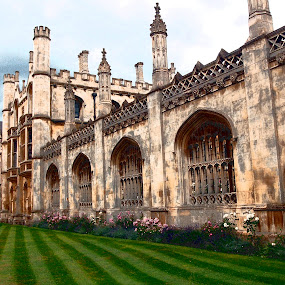 King's College, Cambridge by Timothy Carney - Buildings & Architecture Public & Historical ( england, king's college, cambridge )