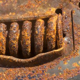 by Annette Flottwell - Abstract Macro ( rust, herrumbre, rouille, corrosión )