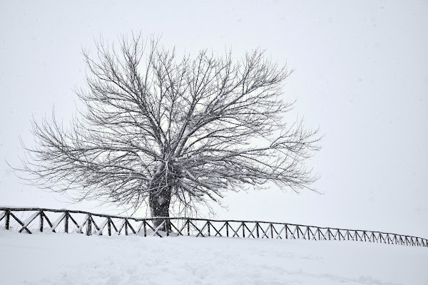 nevica! di s_ornella