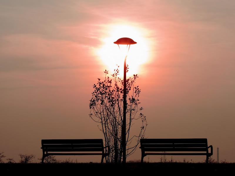 the sun illuminates the street lamp di renzo brazzolotto