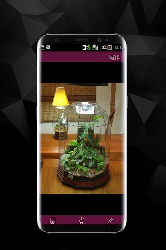 Awesome DIY Terrarium Design 1.0 screenshots 4