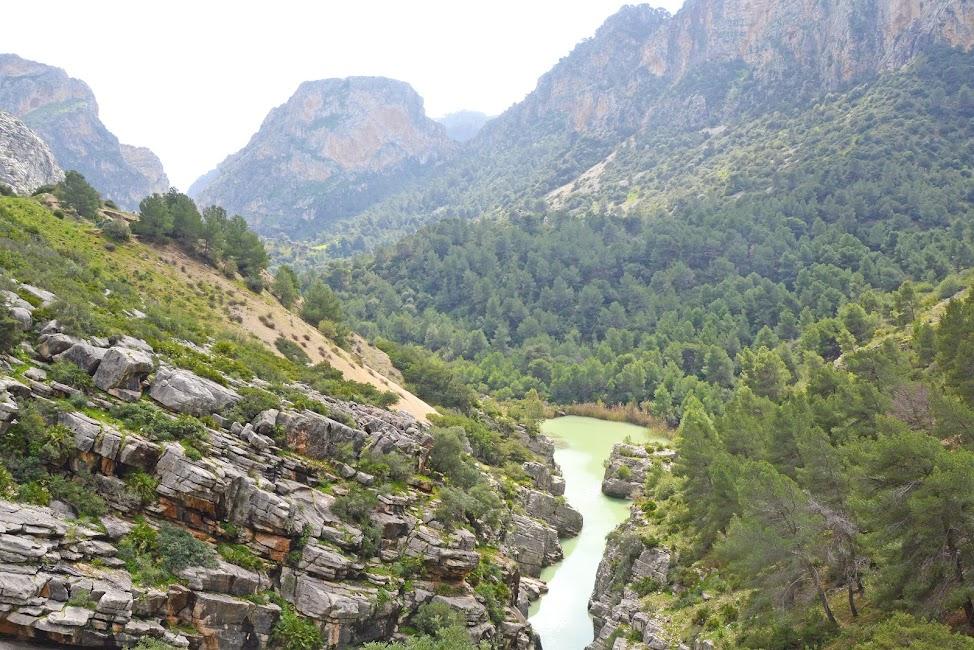 koningspad-andalusie