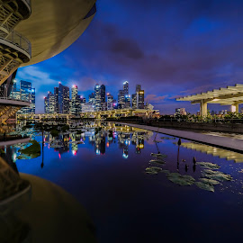 by Gordon Koh - City,  Street & Park  Night ( skyline, reflection, shenton, park, hdr, blue hour, financial center, marina bay sands, cityscape, city park, dusk, singapore, nightscape, city, modern, urban, modern city, glass walls, mbs, asia, night, hotel, pond )