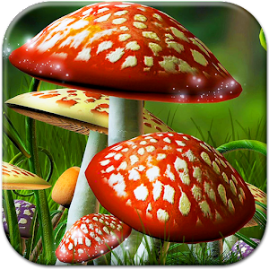 Mushrooms Live Wallpaper