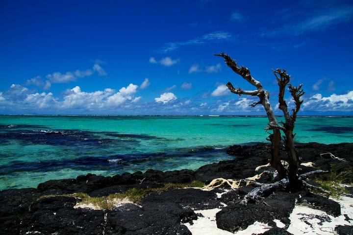 Oceano Indiano di Francesca Malavasi