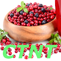 Low Histamine Diet icon