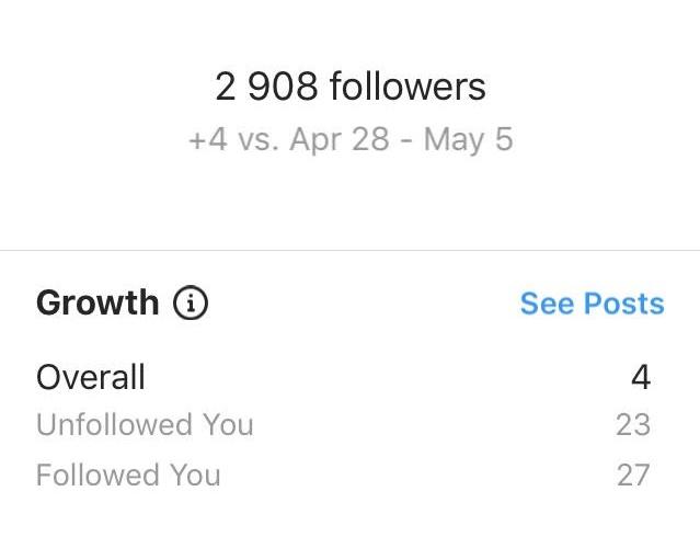 Instagram follower growth