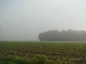 Photo: Foggy Sunday Morning