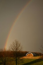 Photo: Rainbow looking East