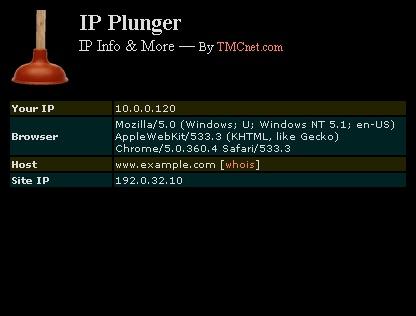 IP Plunger