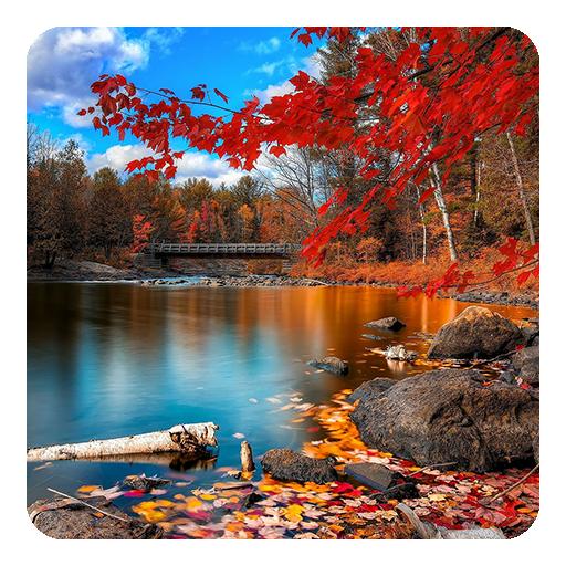 秋水彩画动态壁纸 個人化 App LOGO-硬是要APP