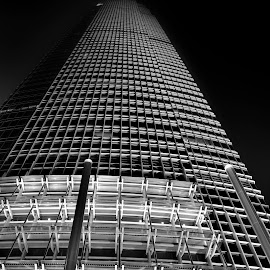 by Francois Wolfaardt - Black & White Buildings & Architecture