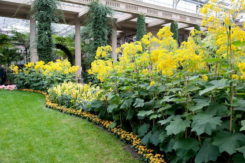 Photo: Bursts of yellow fill the Orangery.