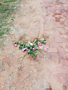 Pink roses were laid on the ground where the pupil died.